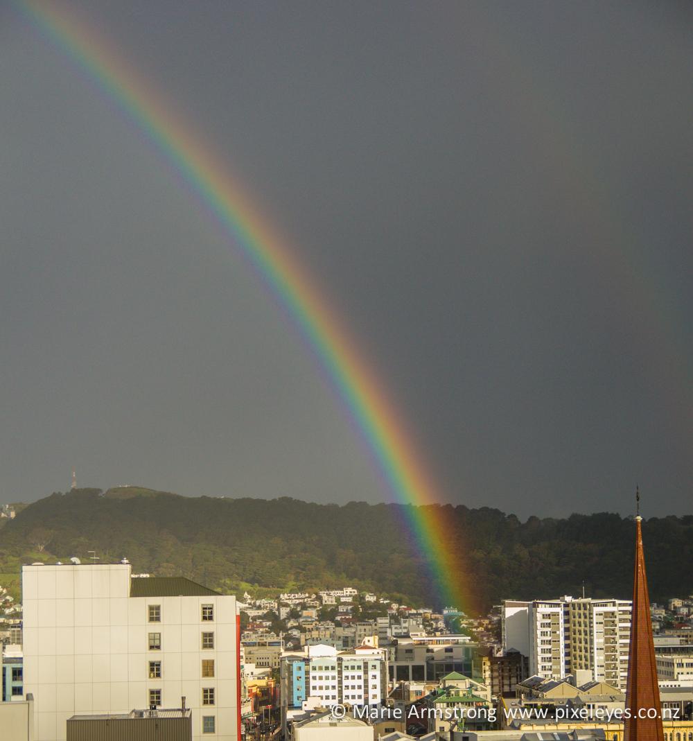 Dixon St Rainbow