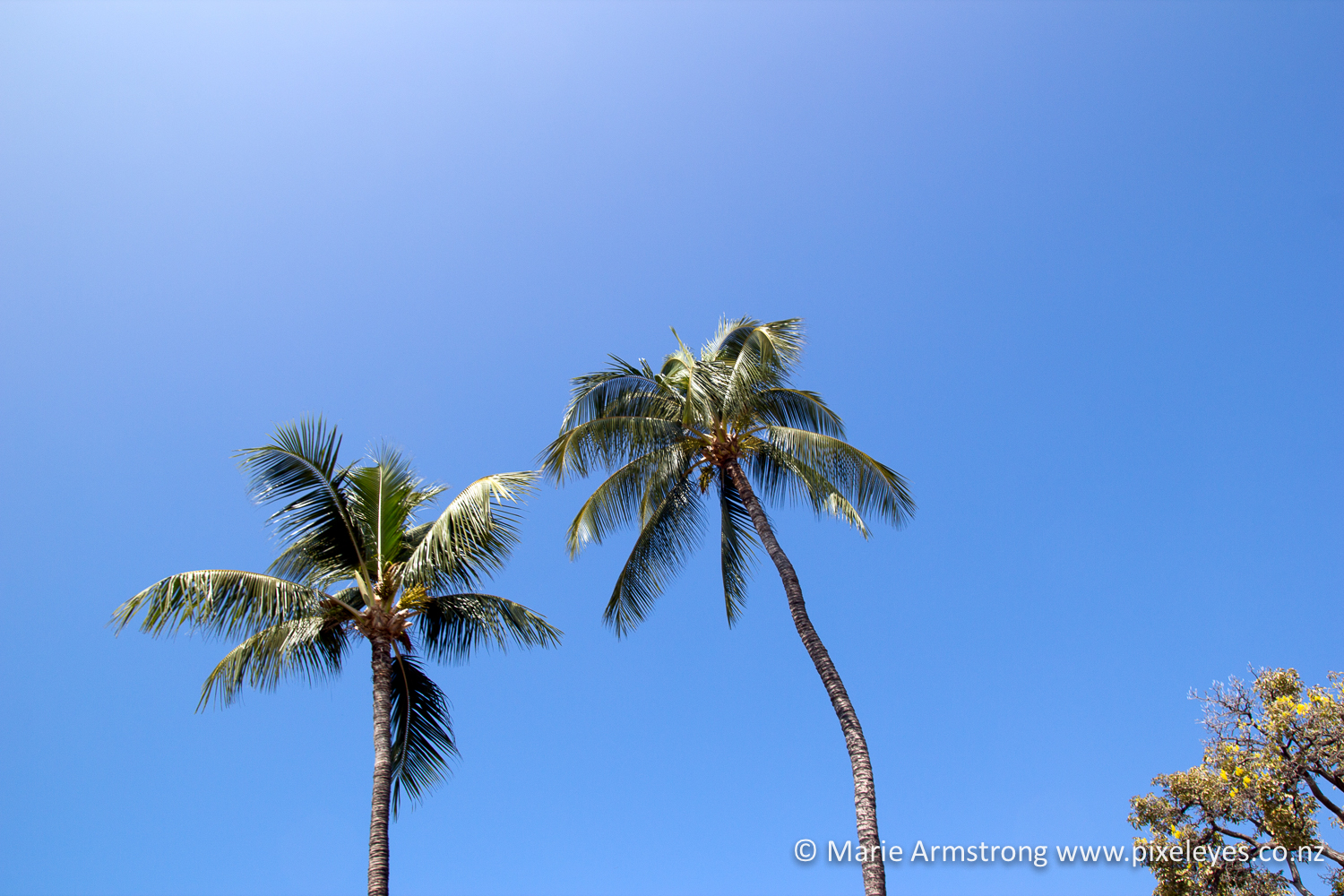 Two tickets to paradise – Hawaii Part 1