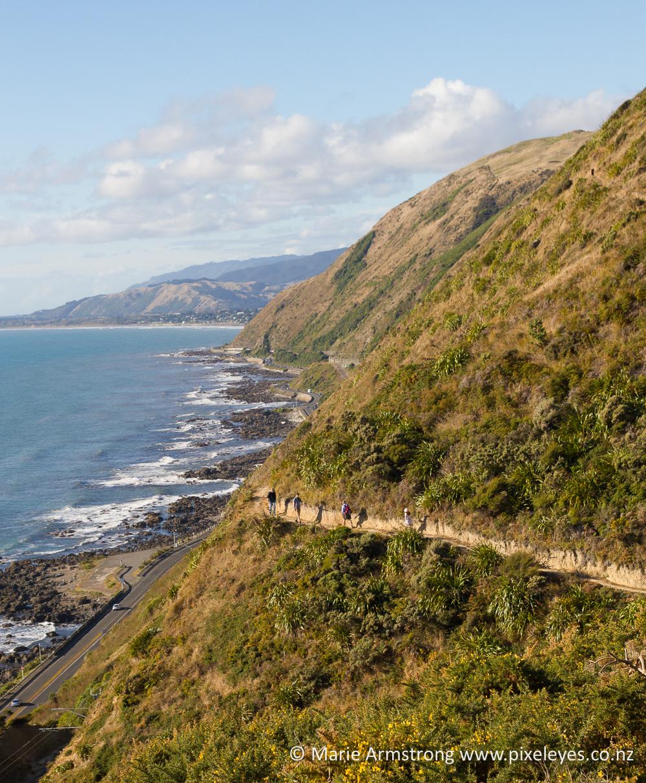 Te Araroa's Stairway to Heaven